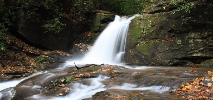 north georgia hiking trails to try